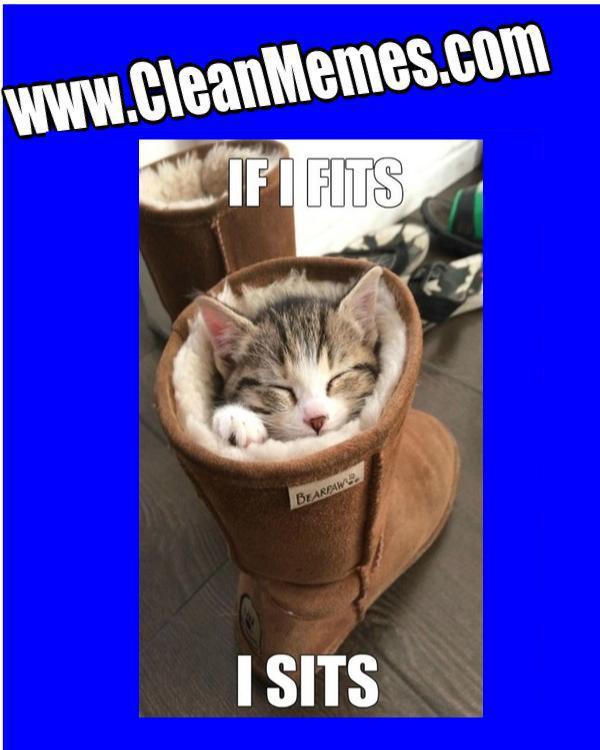 Bootin Kitty Clean Memes