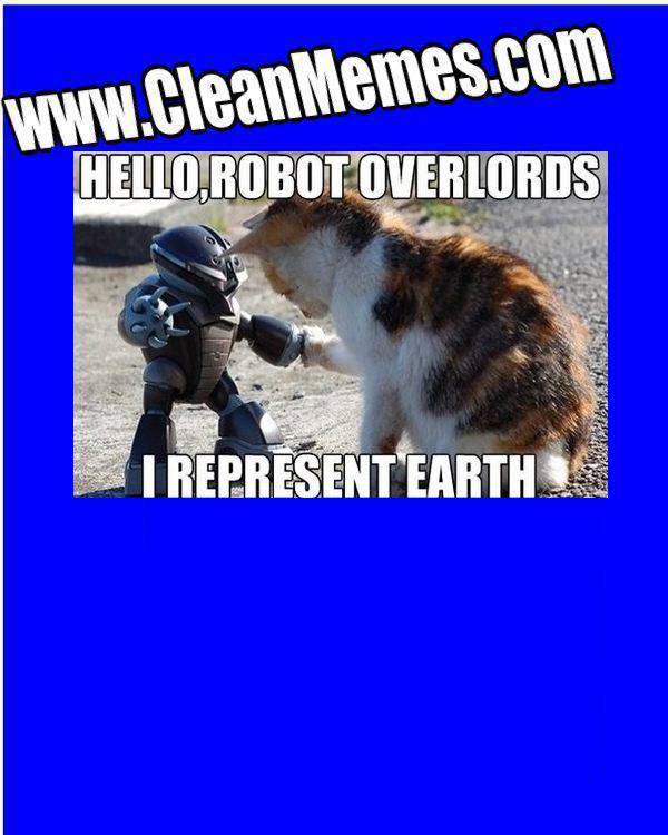 CatMeetsRobot