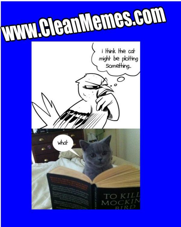 January 14 2014 Clean Memes