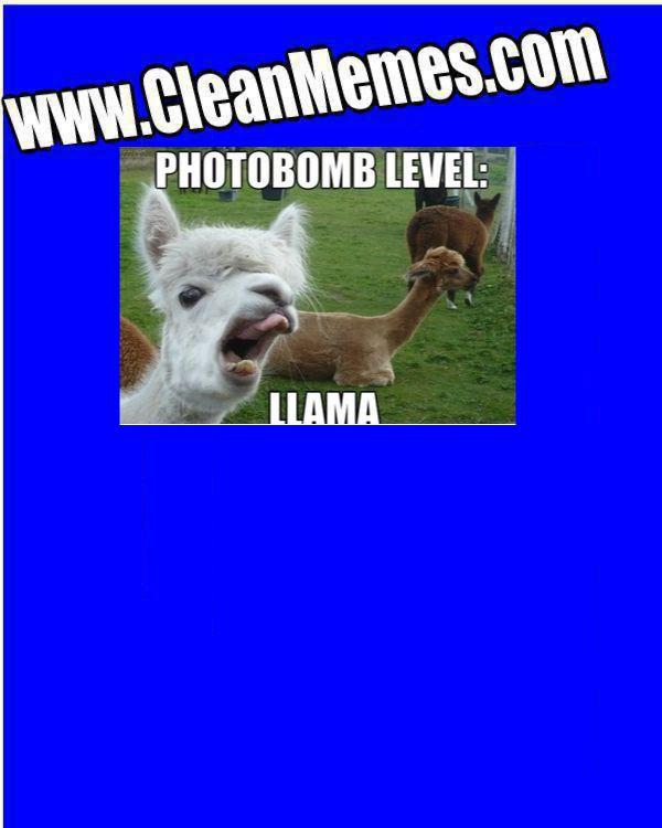 llamabomb