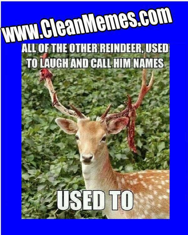 Christmas Memes - Clean Memes