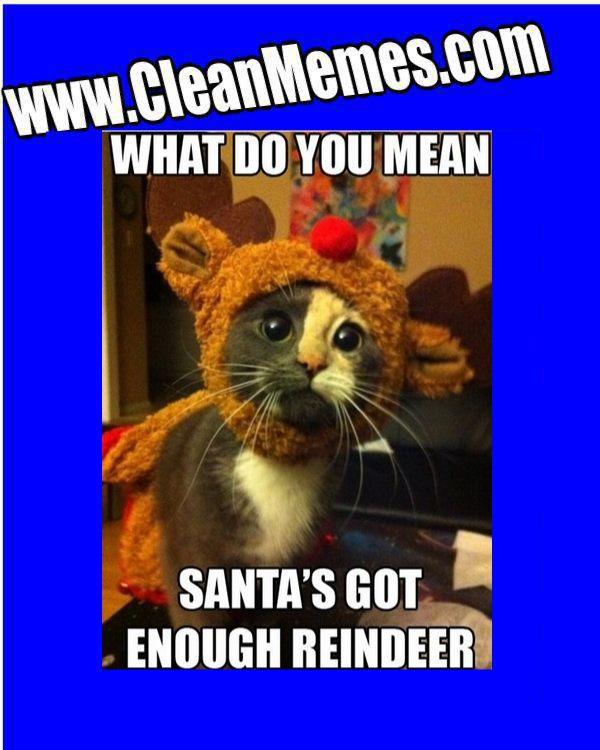Christmas Memes Clean