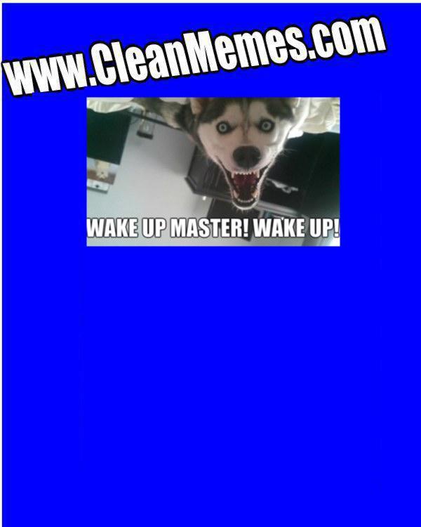 wakeupmaster