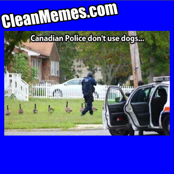 CanadianPoliceDog