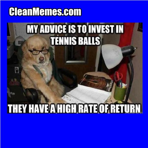 InvestingDog