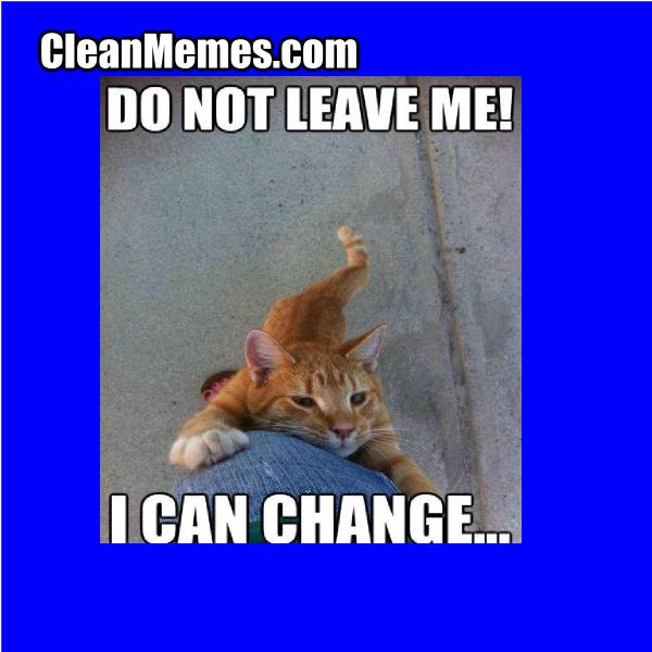 KittyCanChange