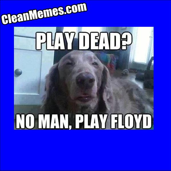 PlayFloyd