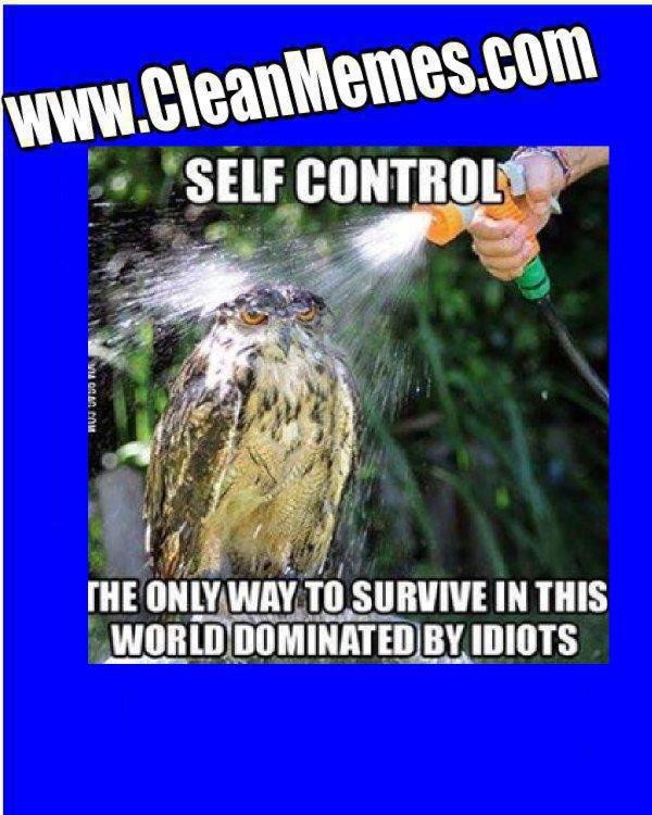 SelfControlOwl