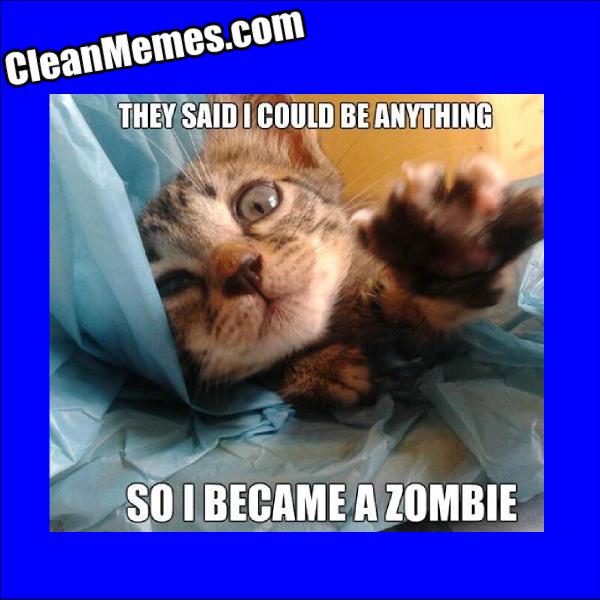 ZombieKitten
