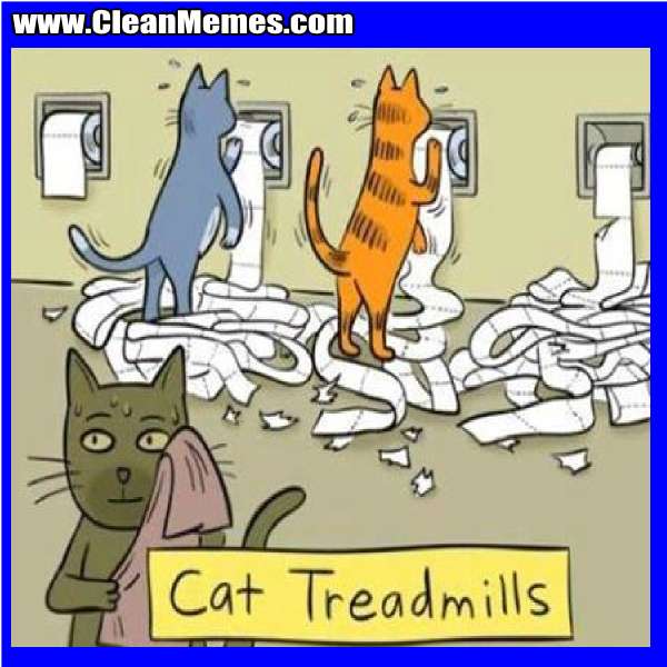 CatTreadMills