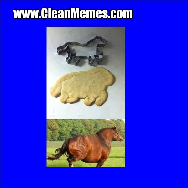 CookieHorse