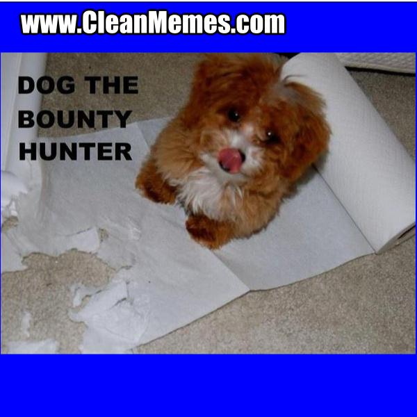 DogTheBountyHunter