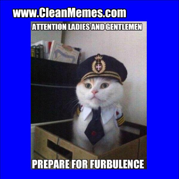 Furbulence