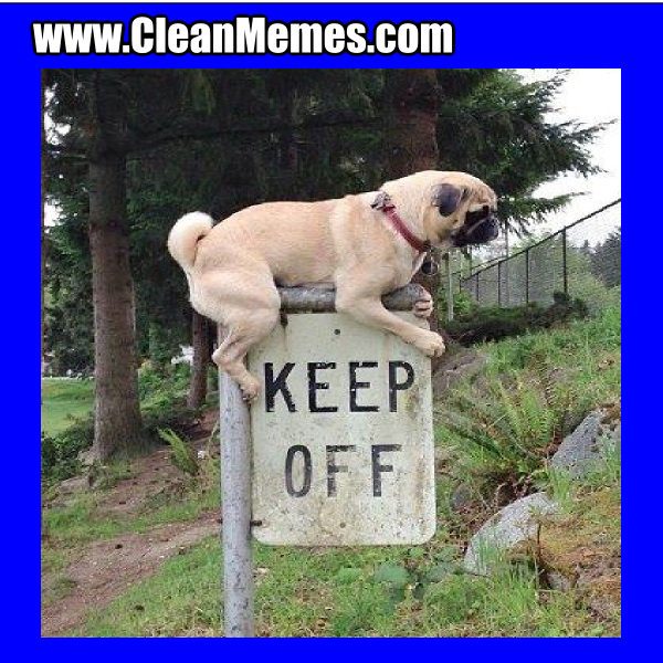 KeepOff