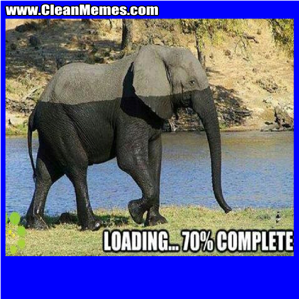 LoadingElephant