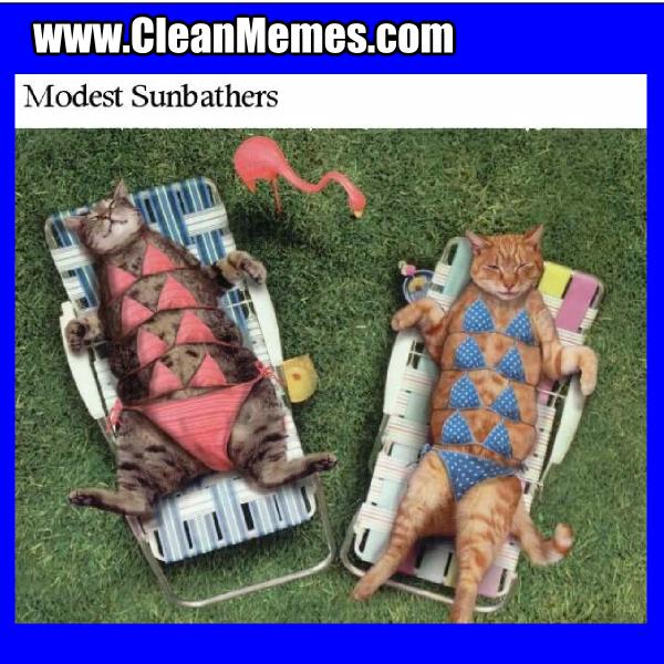 ModestSunbathers