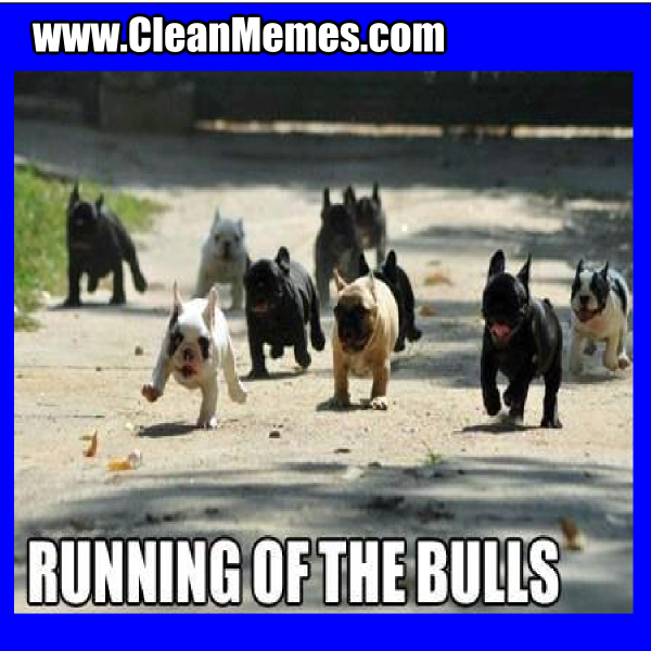 RunningOfTheBulls