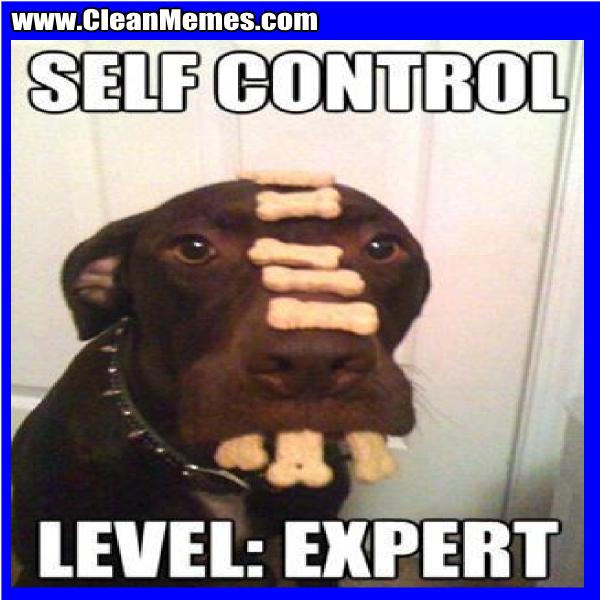 SelfControlLevelExpert