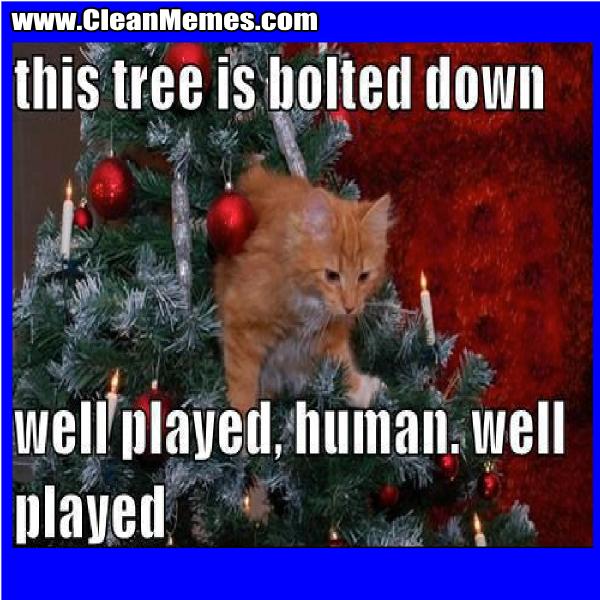 TreeIsBoltedDown
