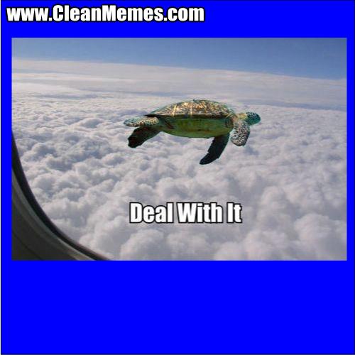 DealWithIt