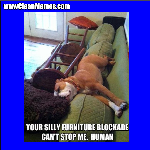 FurnitureBlockade
