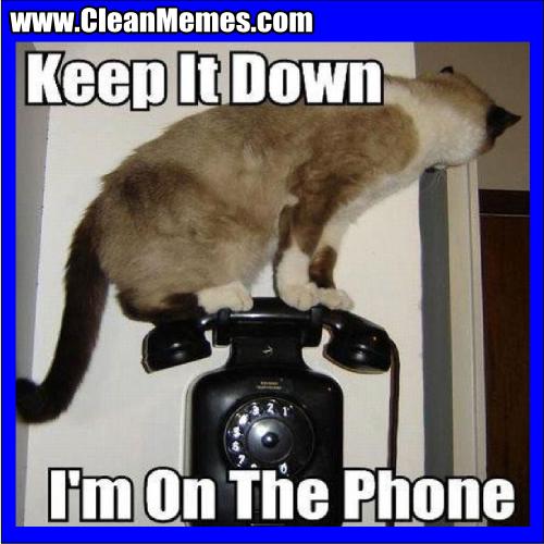 KeepItDownImOnThePhone