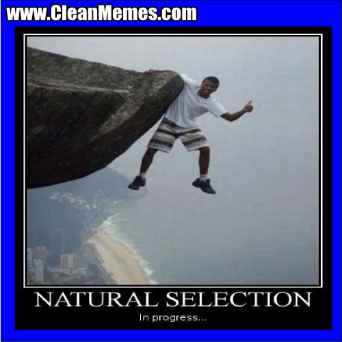 NaturalSelectionInProgress