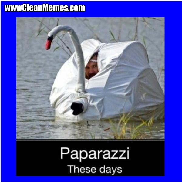 PaparazziTheseDays