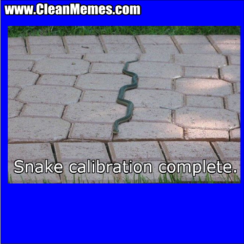 SnakeCalibration