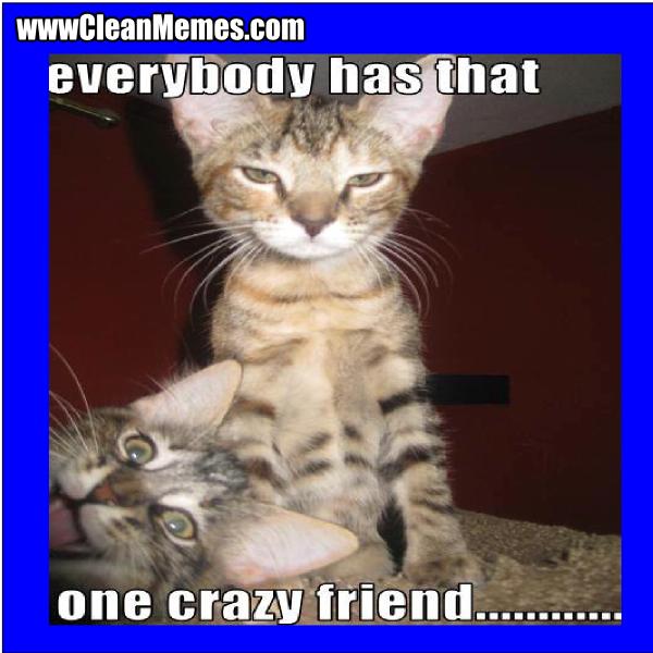 ThatOneCrazyFriend