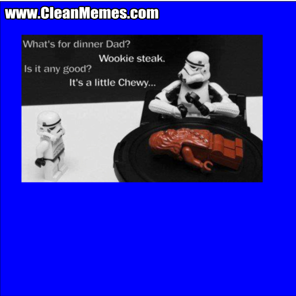 WookieSteak
