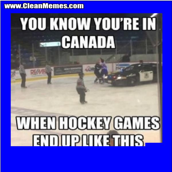 HockeyGamesEndUpLikeThis