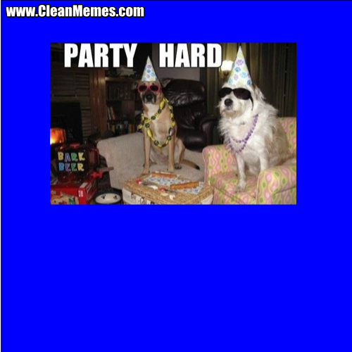 PartyHardDogs