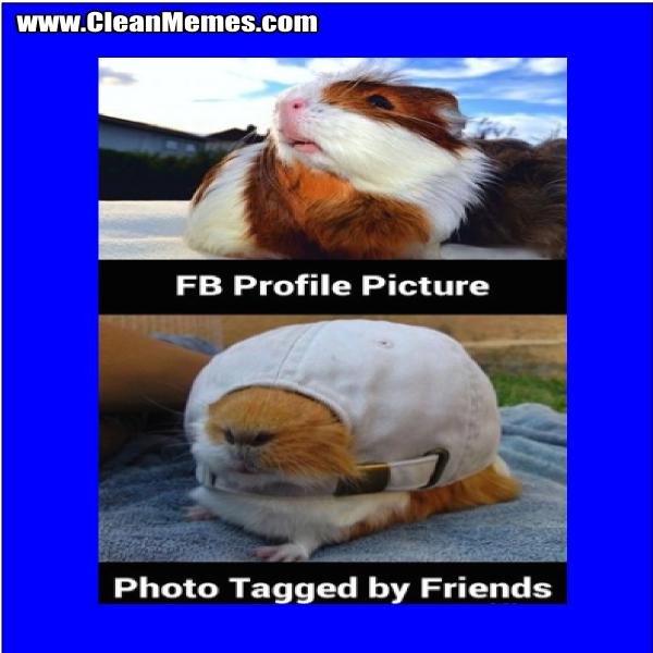 PhotoTaggedByFriends
