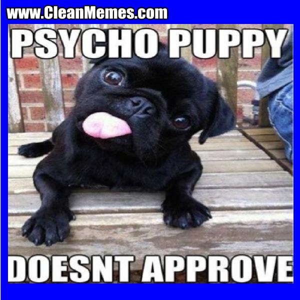 PsychoPuppyDoesntApprove