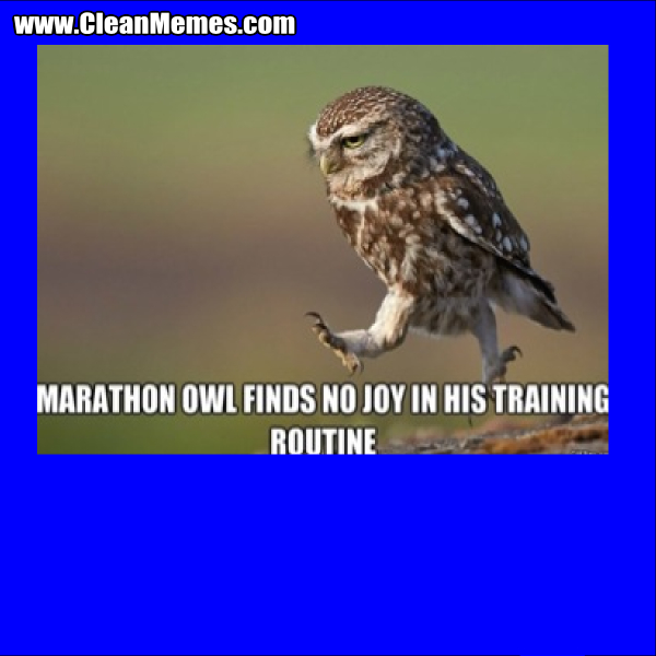 TrainingRoutine