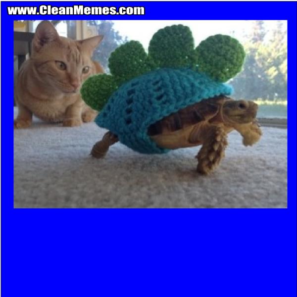 TurtleCrochet