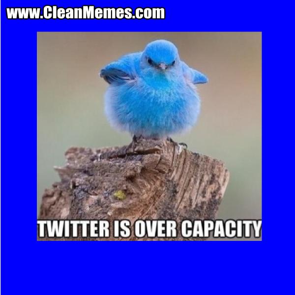 TwitterIsOverCapacity