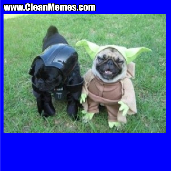 VaderHalloweenDogs
