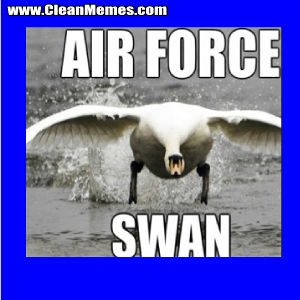 AirForceSwan