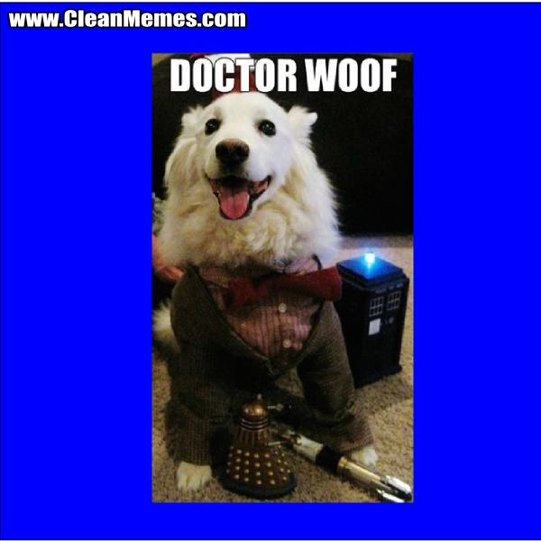 DoctorWoof