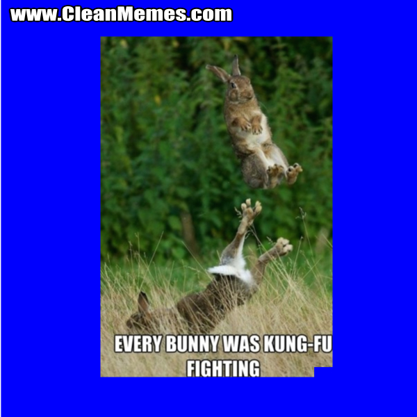 EveryBunnyWasKungFuFighting