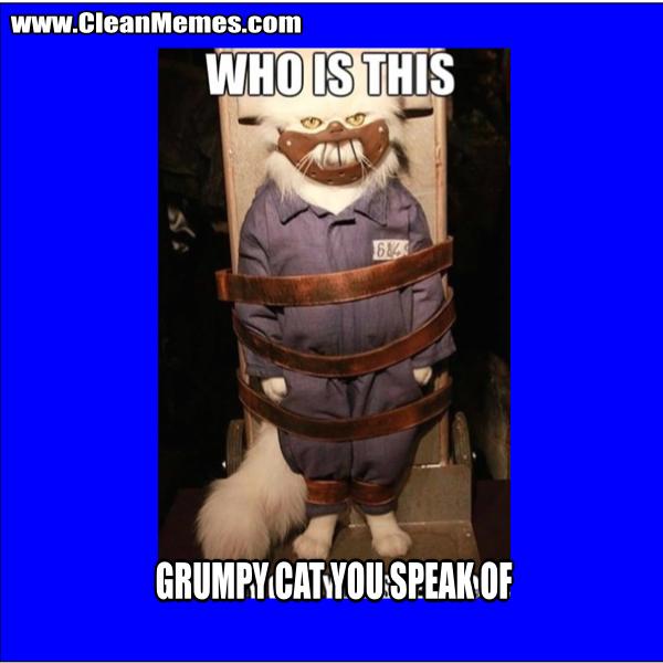 Funny Grumpy Cat Christmas Memes.Grumpy Cat You Speak Of Clean Memes