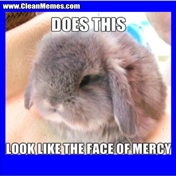 Face Of Mercy Bunny Clean Memes