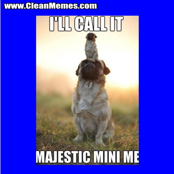 MajesticMiniMe