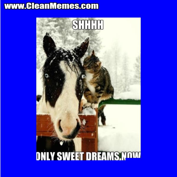 OnlySweetDreams