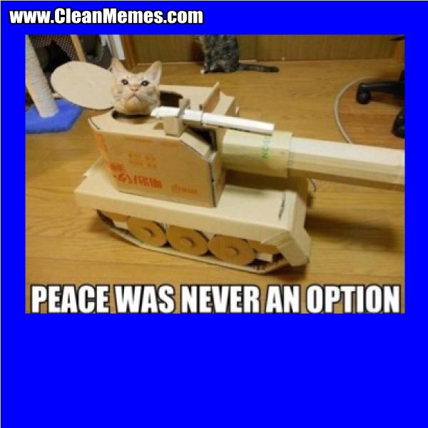 PeaceWasNeverAnOption