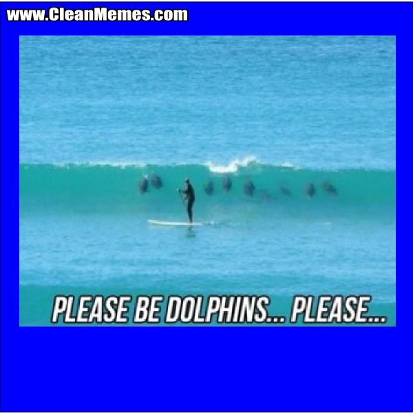 PleaseBeDolphins