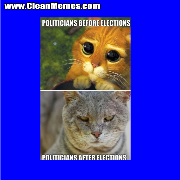 PoliticiansAfterElections