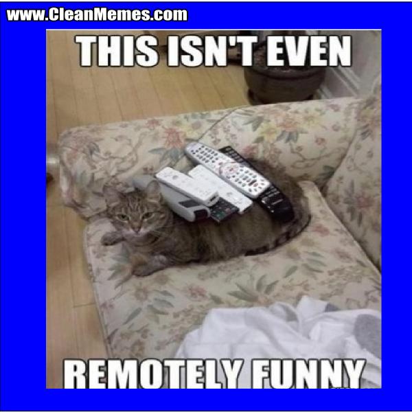 RemotelyFunny